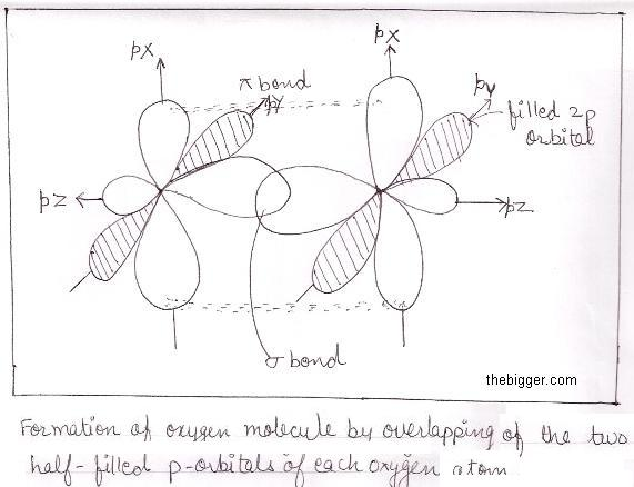 formation of oxygen molecule